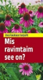 mis_ravimtaim_see_on